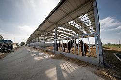 Keros Passendale<br /> Dekstation, Inseminatiecentrum Keros - Passendale 2016<br /> © Hippo Foto - Dirk Caremans<br /> 04/10/16