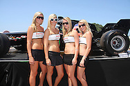 DURBAN, South Africa, the girls from Raffles Nightclub pose next to the A1GP car during the A1GP race weekend in Durban, South Africa on Saturday 23 February 2008.  Photo: SportsPics/SPORTZPICSs