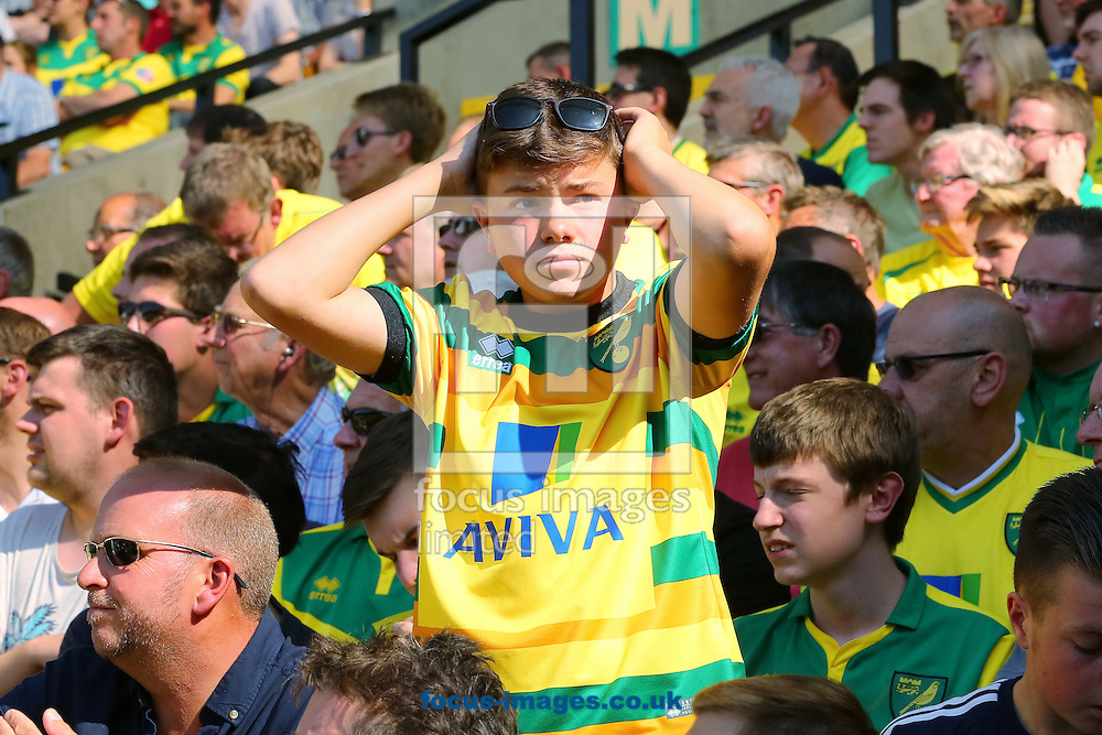 A young Norwich City fan reacts after Referee, Simon Hooper disallowed a equalising goal from Cameron Jerome of Norwich City during the Barclays Premier League match at Carrow Road, Norwich<br /> Picture by Richard Calver/Focus Images Ltd +44 7792 981244<br /> 08/08/2015