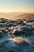 A dawn frost at Upper Burbage, near Fiddler's Elbow. Carl Wark visible in the distance. Dark Peak, Derbyshire. Peak District National Park, England, UK.