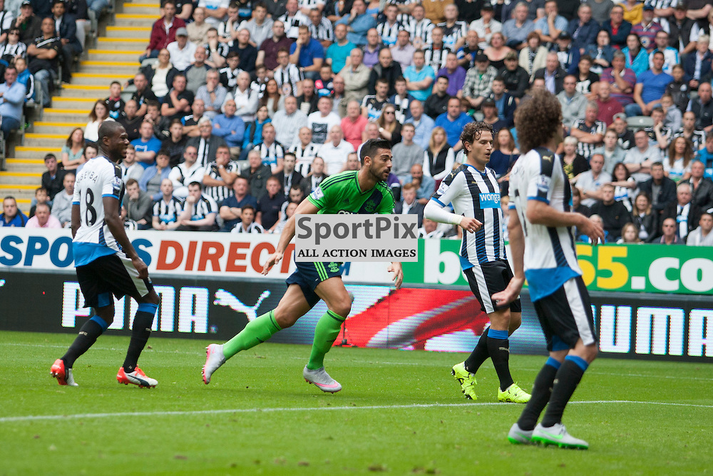 Graziano Pell&egrave; after scoring a goal for Southampton in the Newcastle United v Southampton Barclays Premier League match at St James' Park Newcastle 09 August 2015<br /> <br /> (c) Russell G Sneddon / SportPix.org.uk