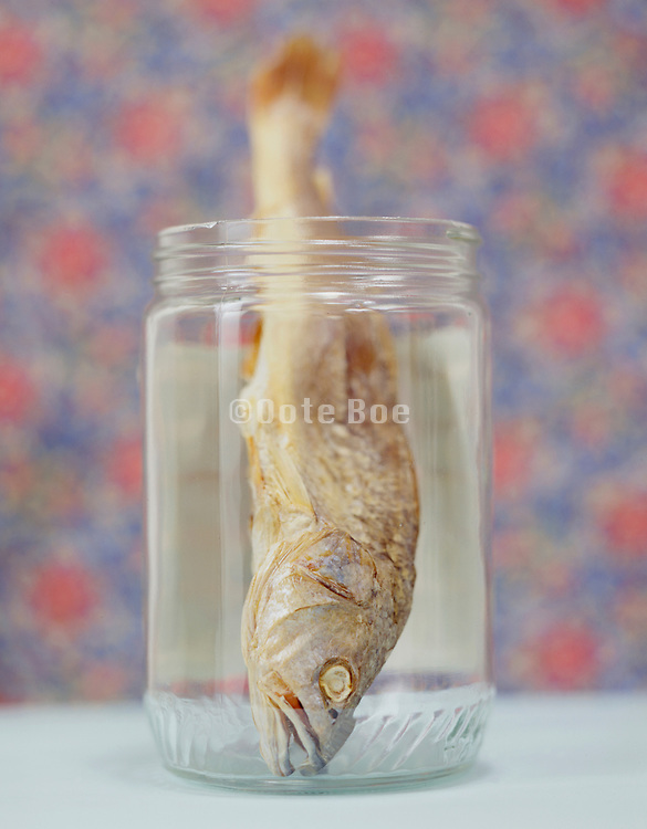 a dried fish upside down in a glass jar.