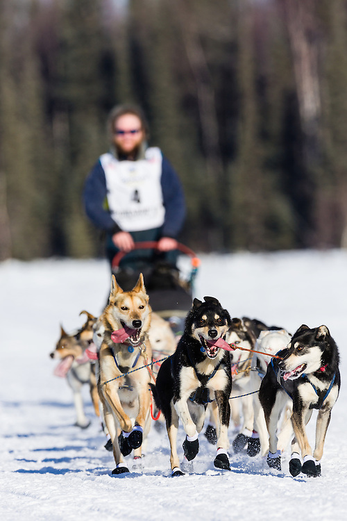 Musher Gus Guenther competing in the 42nd Iditarod Trail Sled Dog Race on Long Lake after leaving the restart on Willow Lake in Southcentral Alaska.  Afternoon. Winter.