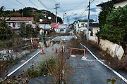 Futaba, Fukushima prefecture, November 14 2013 - Plants growing on the street of Futaba city, shared-home of Fukushima Daiichi Nuclear power plant, and now located in the no-go zone. As of December 2013, 65% of the former residents have decided not to return home.