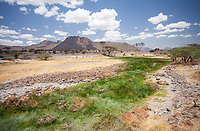 The african wilderness in Shaba National Reserve, Kenya