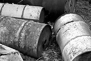 Old Barrels in Black and White