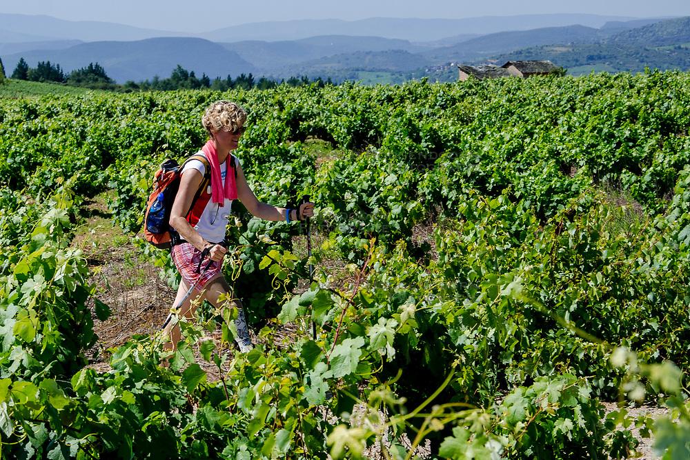 14-06-2017 NED: We hike to change diabetes day 5, Villafranca del Bierzo<br /> De vijfde dag van Ponferrada naar Villafranca del Bierzo. Een tocht van 26 km door heuvelachtig landschap en prachtige wijngaarden.