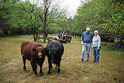 Congressman Frank Lucas around his ranch in western Oklahoma.