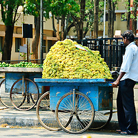 Bangalore, India - Travel Stock Photography