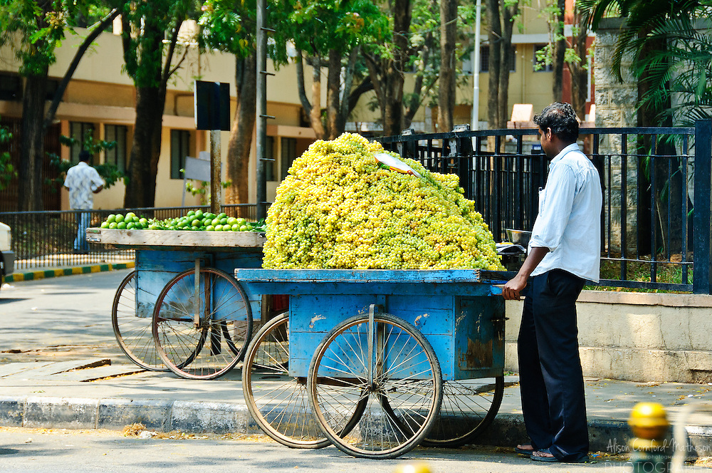 Fresh fruit is for sale on the streets of Bangalore, India. This man sells fresh green grapes from a cart.