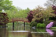 65021-03806 Japanese Garden in spring,  Missouri Botanical Garden, St Louis, MO