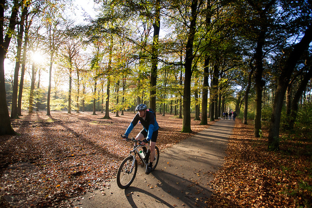Bij Woudenberg geniet een mountainbiker van het mooie herfstweer.<br /> <br /> Near Woudenberg a cyclist enjoys the nice autumn weather.