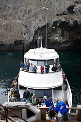 Visitors to Anacapa Island depart a ferry boat, Channel Islands National Park, California, United States of America