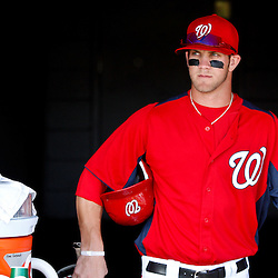 March 4, 2011; Viera, FL, USA; Washington Nationals right fielder Bryce Harper (34) before a spring training exhibition game against the Atlanta Braves at Space Coast Stadium. Mandatory Credit: Derick E. Hingle-US PRESSWIRE
