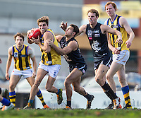 Saturday 25 June 2016<br /> <br /> 2016 VFL Development Season<br /> <br /> Round 12<br /> Northern Blues vs Sandringham Zebras<br /> Preston City Oval<br /> <br /> #PJVFL #AFLVicDevelopment #WeMarchNorth<br /> <br /> Photo Credit: Tim Murdoch/Tim Murdoch Photography