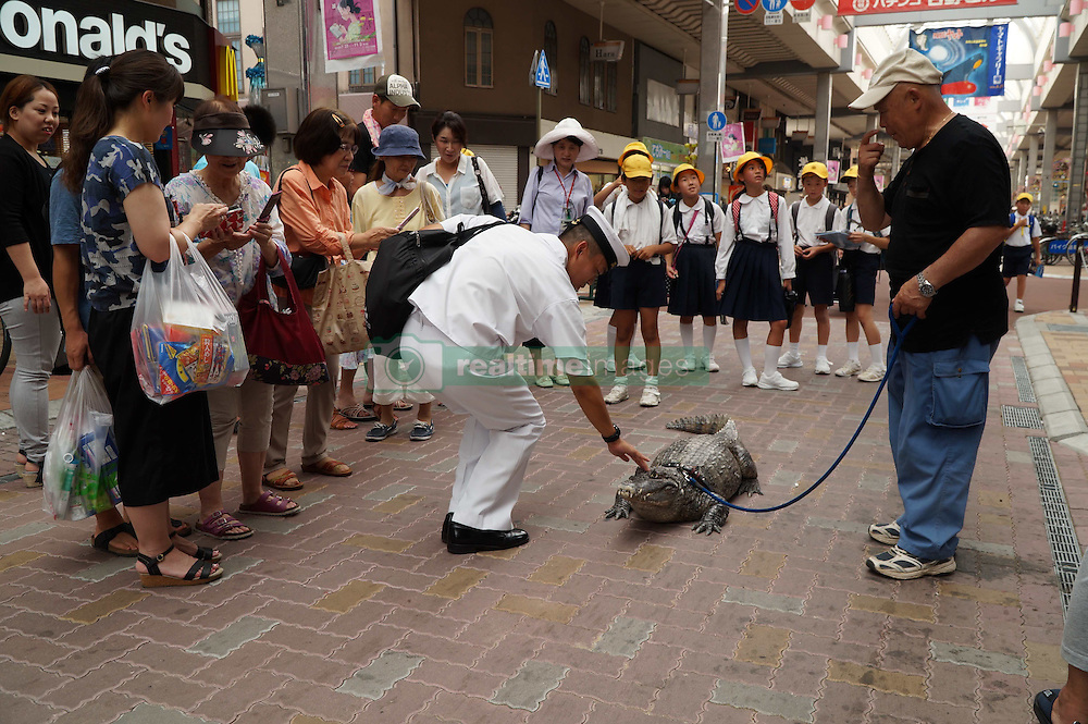 Besonderes Haustier: Nobumitsu Murabayashi lebt seit 34 Jahren mit einem Alligator in seiner Wohnung im japanischen Kure / 2016 ***<br /> VIDEO AVAILABLE - JAPAN OUT<br /> Man lives  with 2 meter alligator<br /> In Kure City, Hiroshima, Japan, lives Mr. Nobumitsu Murabayashi, a 65 year old man who has been living with an alligator for 34 years. The alligator's name is Caiman, and it is a male spectacled caiman. He bought the baby alligator at a festival without thinking too much about it, and now it's grown into a hefty 2.1 meters and 46 kilograms. Though Mr. Murabayashi keeps a massive tub of water in front of his house for Caiman, he roams freely, spending a lot of his time in the tatami room, or sometimes the bathroom. Because of this, he has to have the tatami renewed once a year, and the sliding paper doors are full of holes. Despite that, Mr. Murabayashi cares for Caiman like his own son, and when he has time he takes him for walks in the city. Don't worry, he has permission from the city government! He's been featured in TV shows before, and many people know about him, but still, when people see the huge alligator walking down the street, even the locals stop and stare at him closely. With his children all grown up and independent, Mr. Murabayashi now showers Caiman with all of his attention. Caiman, who is expected to live another 20 to 30 years, has become the joy of Mr. Murabayashi's life.