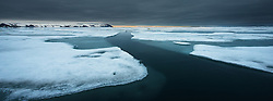 Svalbard at night with Polar bears