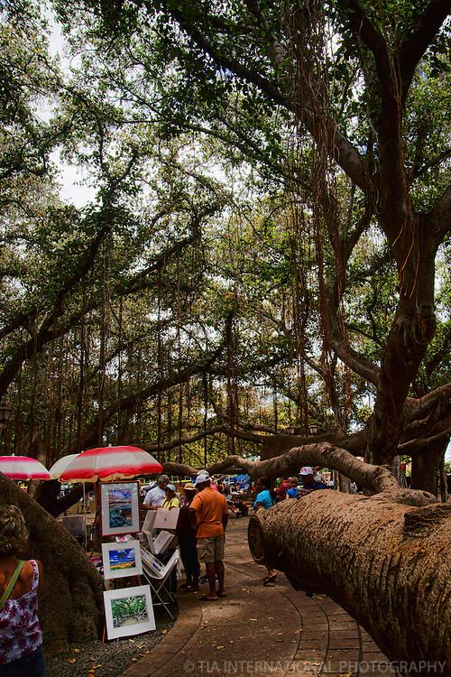 Street Market @ Banyan Tree, Lahaina, Maui