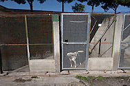 Roma 2  Novembre 2015<br /> Presidio al canile dell' ex Cinodromo di Ponte Marconi, degli attivisti di Animalisti Italiani  insieme all'attrice Loredana Cannata, ai volontari de L'Impronta e Avcpp (associazione volontari canili di Porta Portese) per evitare che la nuova società  la Mapia Srl entri in possesso del canile, mettendo la parola fine a quella che fino ad oggi è stata una gestione virtuosa dei cani senza padrone della Capitale.L'interno del canile<br /> Rome, November 2, 2015<br /> Sit-in the doghouse the former dog track to Ponte Marconi,of the Italian Animal rights activists with actress Loredana Cannata, the volunteers of The imprint and Avcpp (Association volunteers kennels Portaportese) to prevent the new company the Mapia Srl  comes into possession of kennel, putting an end to what until now has been a virtuous management of ownerless dogs in the capital. The interior of the kennel