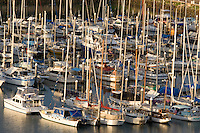 Luxury yachts moored in their berths at the Breakwater Marina, in the heart of Townsville.