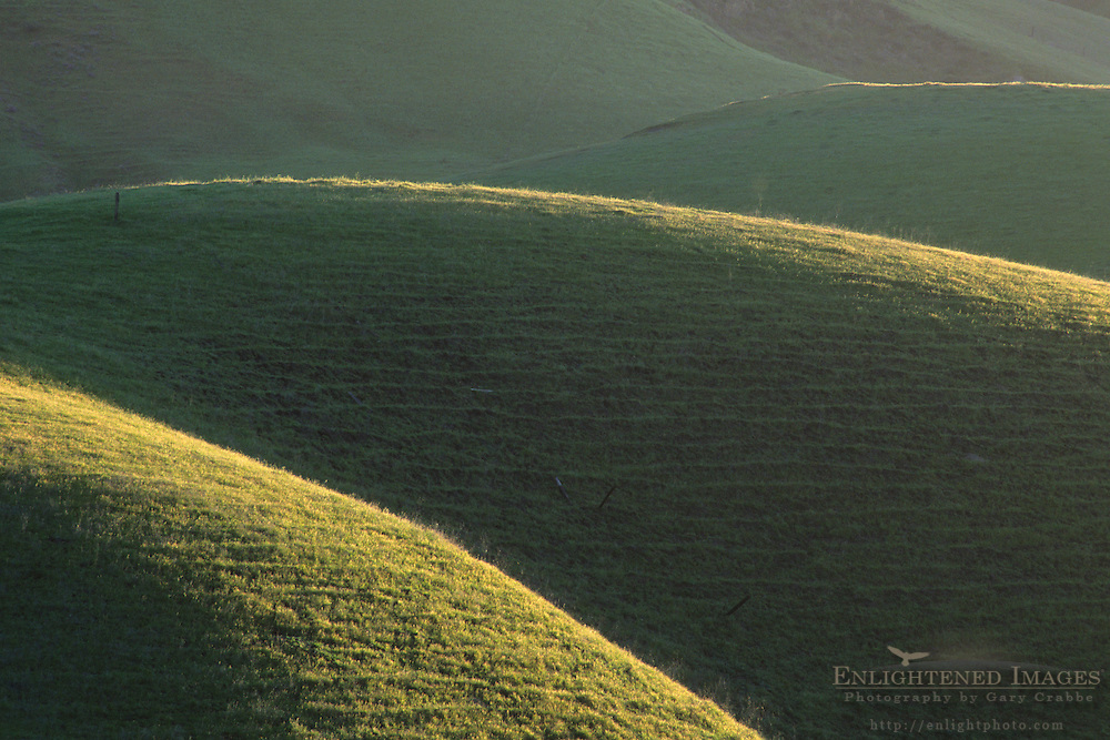 Green hills in spring, in the Tassajara Region, Contra Costa County, CALIFORNIA