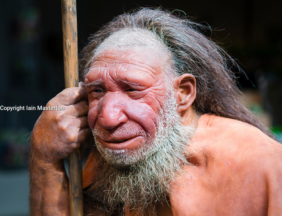 Neanderthal man on display at Neanderthal Museum in Mettmann Germany