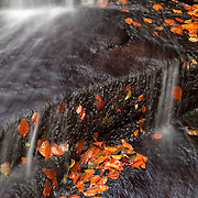 Waterfall detail with leafs in autumn color