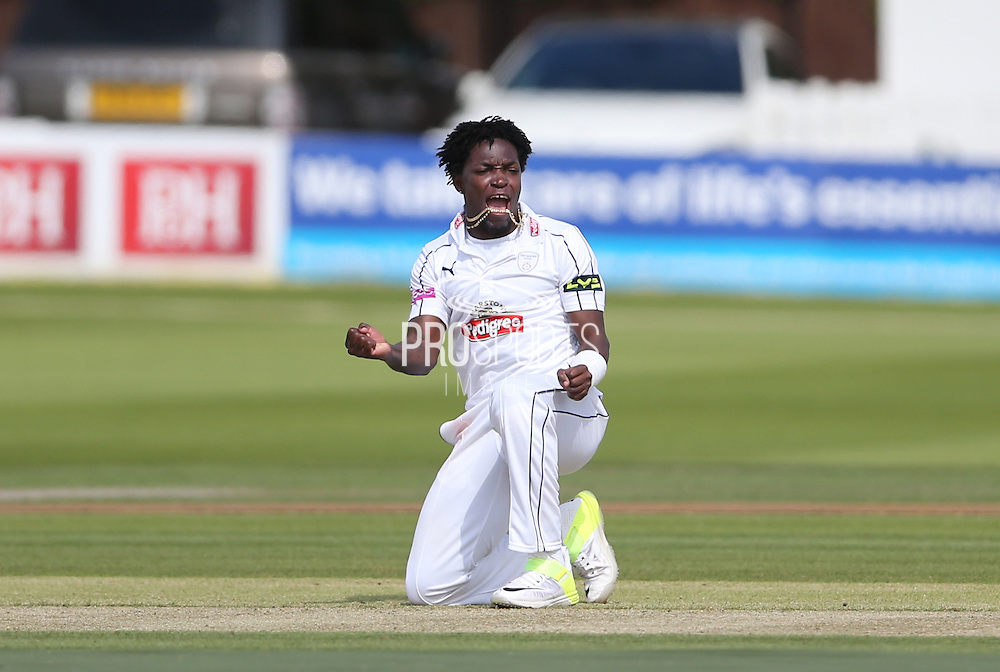 Fidel Edwards celebrates taking the wicket of Mike Yardy  during the LV County Championship Div 1 match between Sussex County Cricket Club and Hampshire County Cricket Club at the BrightonandHoveJobs.com County Ground, Hove, United Kingdom on 8 June 2015.