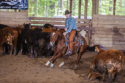 May 20, 2017 - Minshall Farm Cutting 3, held at Minshall Farms, Hillsburgh Ontario. The event was put on by the Ontario Cutting Horse Association. Riding in the 25,000 Novice Horse Non-Pro Class is Scott Reed on LL Crockett Rocket owned by the rider.