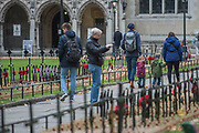 Visitors to the Abbey pause for a look - Volunteers from the Royal British Legion set out the Field of Remembrance outside Westminster Abbey. The field comprises thousands of poppies on crosses to remember individuals and units. It will be completed in time for a Royal visit on Thursday . London 07 Nov 2017.