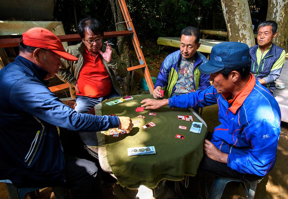 """Men play """"Go-stop"""", a Korean card game also known as """"godori"""" (고도리), in Busan, South Korea."""