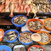 Fresh Fish, Shrimp and Crustaceans from Chinese Fishing Nets at Cochin, India<br />