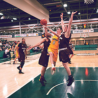 3rd year guard, Benjamin Hillis (8) of the Regina Cougars during the Men's Basketball Home Game on Fri Nov 30 at Centre for Kinesiology,Health and Sport. Credit: Arthur Ward/Arthur Images