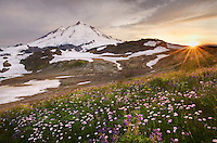 Sunset over Mount Baker, 10,781 ft (3,286 m), Mount Baker Wilderness Washington