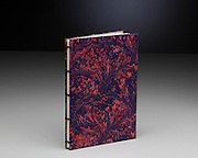 Coptic sewn binding and marbled paper
