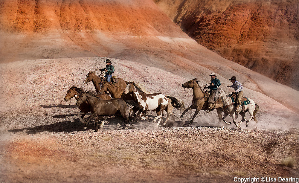 Three Cowboys Galloping Through a Canyon with a herd of Ranch Horses, Wyoming