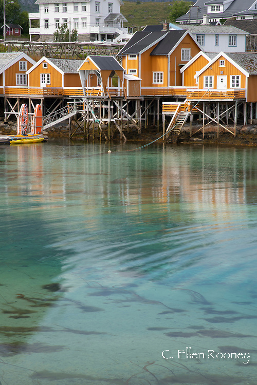 Bright yellow fishing huts, rorbu, fishing huts now used for tourist accommodation in Reine, Moskensoya, Lofoten, Islands