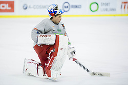 Luka Gracnar during practice session of Slovenian National Ice Hockey Team prior to the IIHF World Championship in Ostrava (CZE), on April 21, 2015 in Hala Tivoli, Ljubljana, Slovenia. Photo by Vid Ponikvar / Sportida