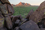 Petroglyphs in Ironwood Forest National Monument, with Ragged Top Peak in the distance. Early morning light.