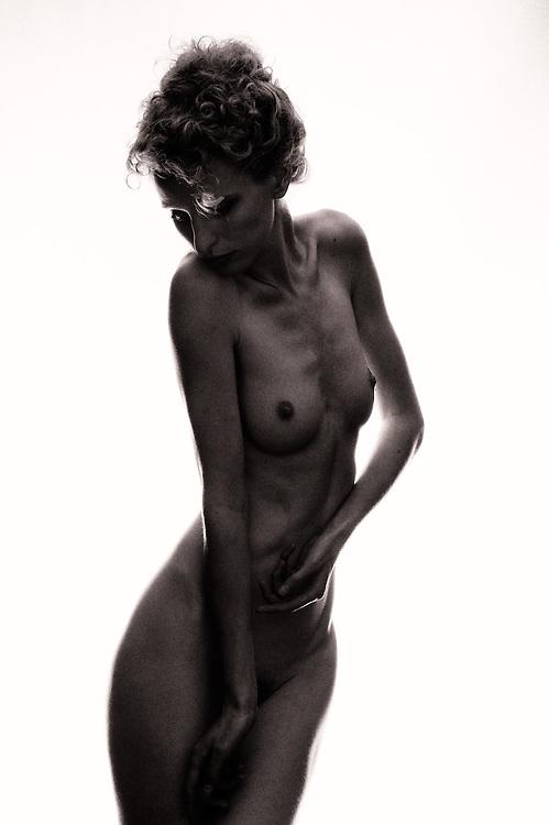 Model: Fredau