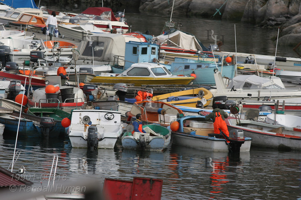 Small fishing boats fill harbor at Ilulissat, third largest town in Greenland.