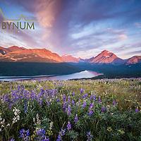 sunrise two medicine valley glacier national park