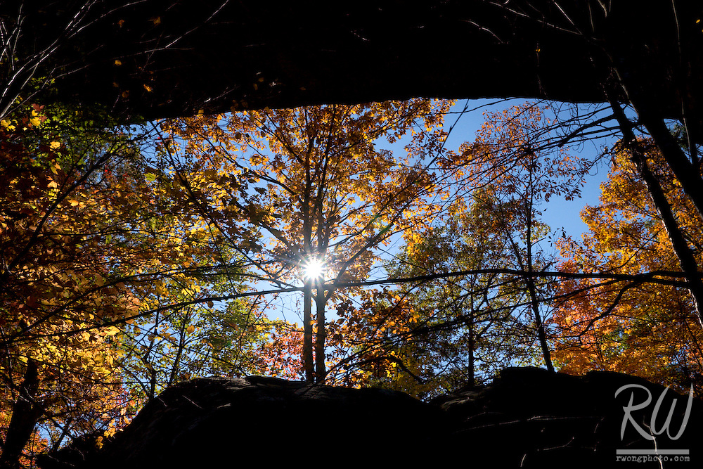 Sun Shining Through Trees and Natural Bridge, Natural Bridge State Resort Park, Kentucky