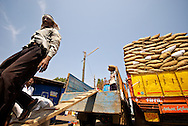 Workers load dried fish at Mangalore fish market, India