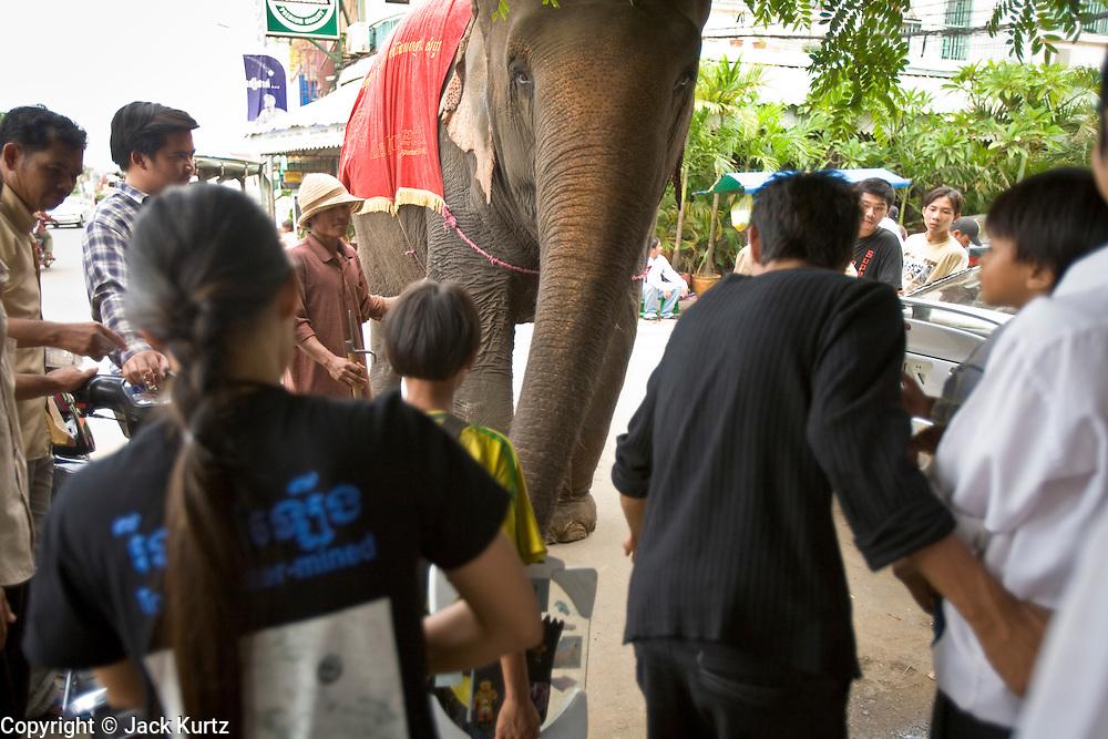 04 JULY 2006 - PHNOM PENH, CAMBODIA: Cambodians gather around an elephant on Sisowath Quay, the main riverfront boulevard in Phnom Penh, Cambodia.   Photo by Jack Kurtz