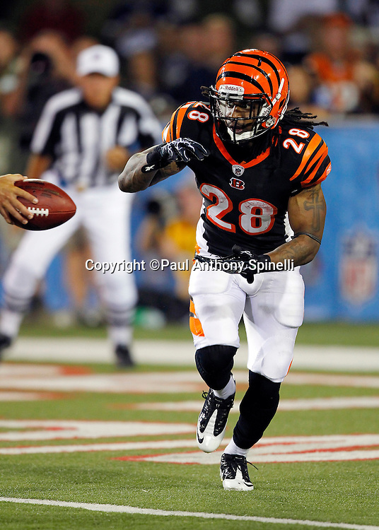 Cincinnati Bengals halfback Bernard Scott (28) takes a handoff on a running play during the NFL Pro Football Hall of Fame preseason football game between the Dallas Cowboys and the Cincinnati Bengals on Sunday, August 8, 2010 in Canton, Ohio. The Cowboys won the game 16-7. (©Paul Anthony Spinelli)