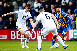 Josh Laurent of Shrewsbury Town takes on Ruben Neves of Wolverhampton Wanderers - Mandatory by-line: Robbie Stephenson/JMP - 26/01/2019 - FOOTBALL - Montgomery Waters Meadow - Shrewsbury, England - Shrewsbury Town v Wolverhampton Wanderers - Emirates FA Cup fourth round