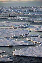 ATLANTIC OCEAN ABOARD ARCTIC SUNRISE 31MAY11 - Arctic sea ice during sunset in the Labrador Sea seen from aboard the Greenpeace Ship Arctic Sunrise...jre/Photo by Jiri Rezac / Greenpeace
