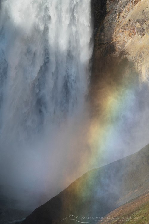 Rainbow at base of Lower Falls of the Yellowstone River  seen from Red Rock Point, Yellowstone National Park