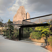 Jaguar enclosure in Zone Guyane of the new Parc Zoologique de Paris or Zoo de Vincennes, (Zoological Gardens of Paris or Vincennes Zoo), which reopened April 2014, part of the Museum national d'Histoire naturelle (National Museum of Natural History), 12th arrondissement, Paris, France. Picture by Manuel Cohen